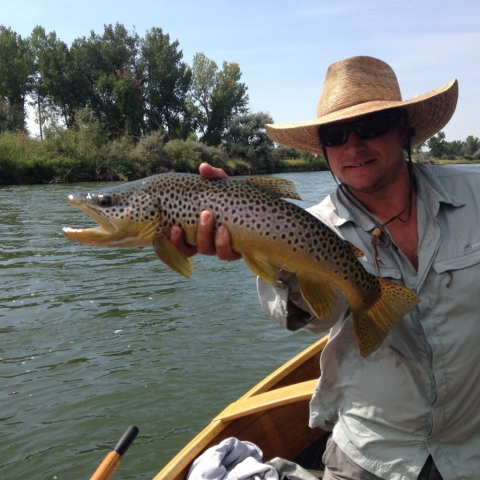 Tyler Steele Guide Service ~ Big Horn River Brown Trout - Fort Smith Montana
