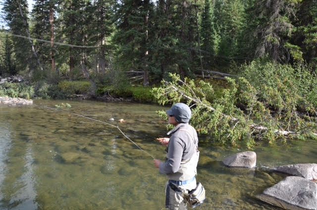 Tyler Steele ~ Big Horn River Outfitter and Guide. Fort Smith / Hardin Montana