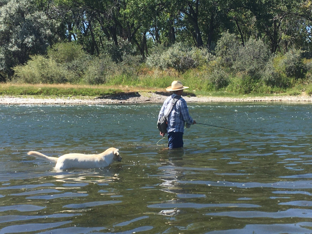 Guides Day Off - Tyler wade fishing on the Bighorn River