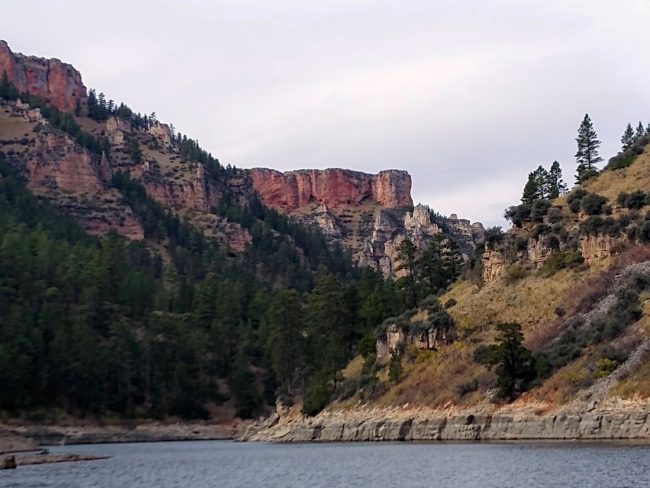 Guided Sight-Seeing and wildlife viewing in the Bighorn Lake and Canyon