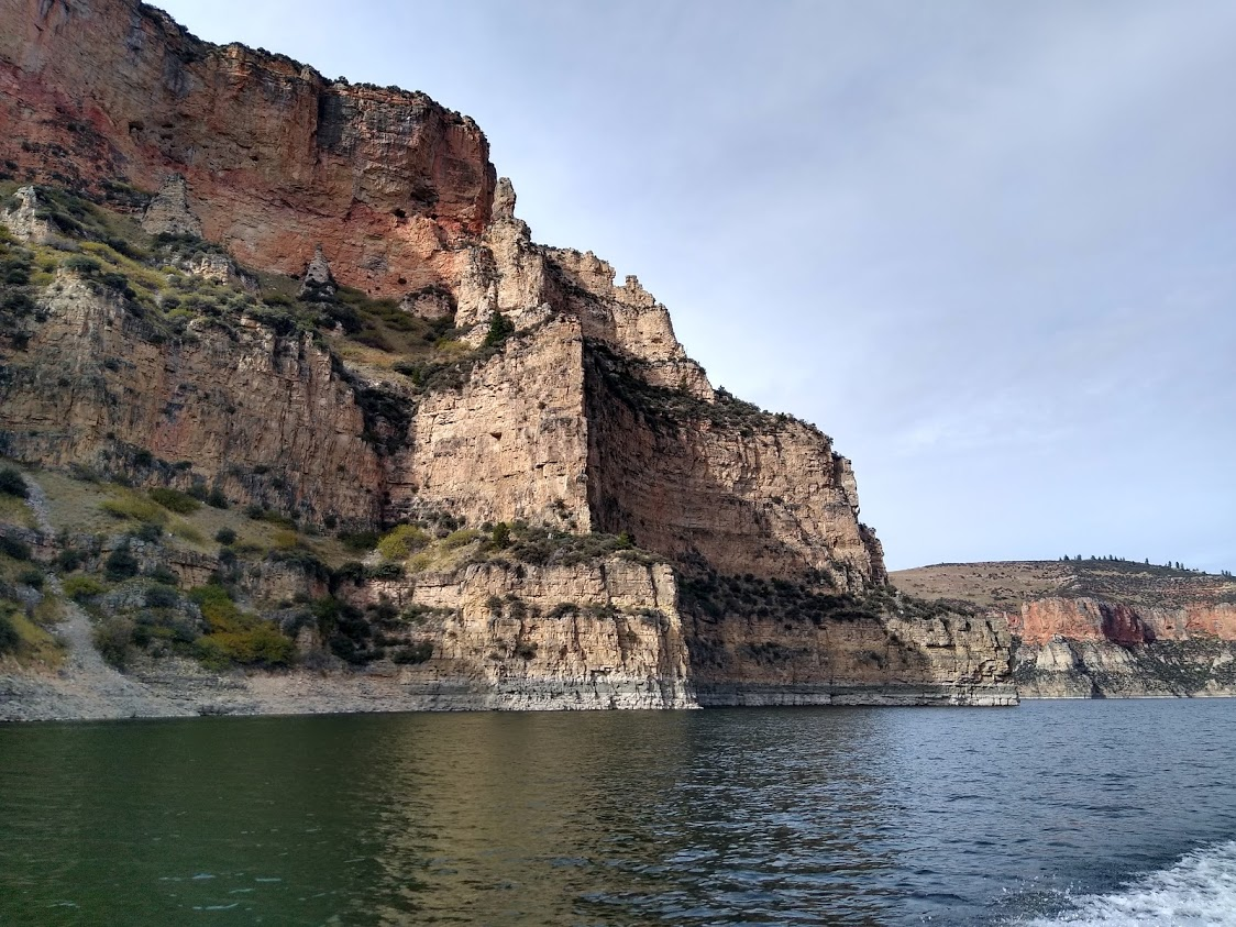 Professionally guided viewing in the Bighorn Lake and Canyon